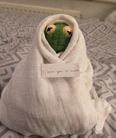 I should have never got rid of my Kermit doll. The post I should have never got rid of my Kermit& appeared first on Kermit the Frog Memes. New Memes, Funny Memes, Hilarious, Memes Humor, Sapo Meme, Frog Wallpaper, Memes Lindos, Cute Love Memes, Memes In Real Life