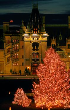 Christmas Tree in front of Biltmore House in Asheville