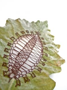 (We were in camp together a short while. Textile Texture, Textile Art, Dry Leaf Art, Biology Art, Embroidery Leaf, Lace Art, Embroidered Leaves, Concrete Crafts, Dream Art