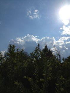 Nachmittagshimmel über Wien Mountains, Nature, Travel, Heavens, Naturaleza, Viajes, Destinations, Traveling, Trips