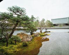 "Jacqueline Hassink<br /> <em>Seiryoden 7,subtemple of Nanzen-ji,East Kyoto,4 March 2009 (8:00–9:00)</em><br /> Chromogenic prints<br /> 41 x 51""  Edition of 7<br /> 50 x 63""  Edition of 7<br /> 63 x 79""  Edition of 7"