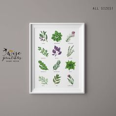New ★ KITCHEN HERBS ★ green culinary botanical watercolor print. Basil, Oregano, Sage, Cilantro, Rosemary, Parsley, Marjoram, Mint & Lavender french herbs for the kitchen, dining room, summer cottage or just a cute gift for a woman!