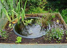 Garden Planner, Diy Outdoor, Permaculture, Plants, Small Gardens, Mini Garden, Japanese Garden, Indoor Water Garden, Ponds For Small Gardens