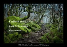 (¨*•.¸✿ www.facebook.com/thebestofInternationalPhotography ✿¸.•*¨) #quotes Please rate this picture from 1 → 10.