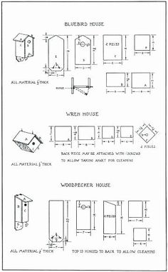 Bluebird House Plans, Bird House Plans Free, Building Bird Houses, Bird Cage Design, Purple Martin House, Wren House, List Of Birds, House Sparrow, Different Birds