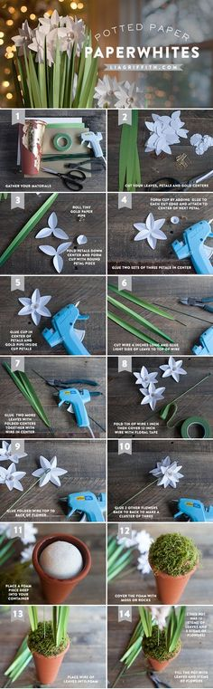 Paper Flower Craft Tutorial How To Make Flowers Photography Backdrop DIY Paperwhites