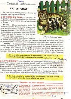 Manuels anciens: Orieux, Everaere, Leçons de choses CE (1952) Study French, Biology, Communication, Activities, Reading, Islam, Inspiration, Learn French, French Nails