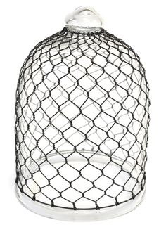 Buy Glass and wire cloche: Delivery by Crocus