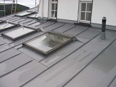 Zinc roofing with roof lights. Not flush so must be detailed differently.                                                                                                                                                     More