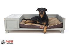 DIY plans showing you exactly how to build a large dog bed with storage. No woodworking experience required.