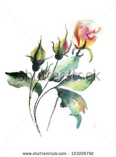 Watercolor painting Stock Photos, Images, & Pictures | Shutterstock