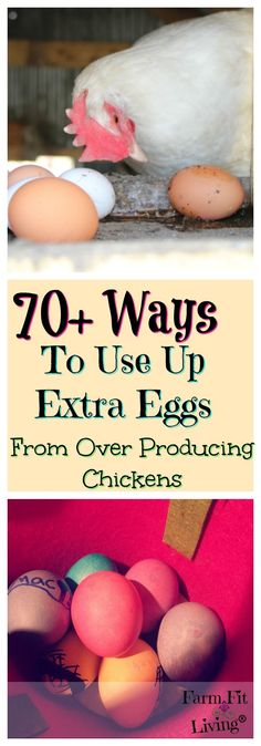 Are you drowning in eggs these days? Here are 70+ Ways to use up extra eggs!