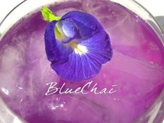 BlueChai Blue Tea is on Etsy! Butterfly Pea Flower Tea, Beyond The Border, Cocoa Tea, Keep Calm And Drink, Purple, Blue, Herbalism, The Incredibles, Things To Sell