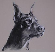 Trigg Studio - Sporting Dog Art, Lexington, KY - Charcoal Drawings