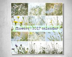 Calendar 2017 Printable Pictures Wild Flower Calendar A4 Instant Download Flower Photography Farmhouse Decor White Blue green Pastel decor by LightBluePhotography on Etsy
