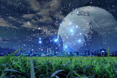 蛍と都会 夜景の壁紙 | 壁紙キングダム PC・デスクトップ版
