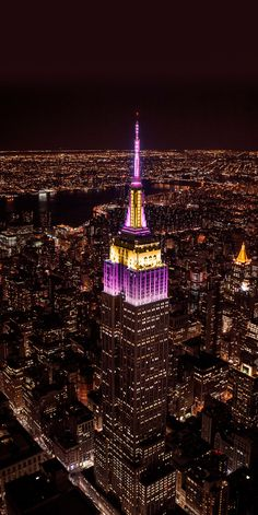New York Buildings, View Wallpaper, Dream City, Night City, Dog Show, Historical Pictures, New York Travel, Birds Eye View, City Lights