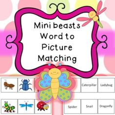 Laminate the picture page as an a4 page to use as a board. Cut out and laminate the box words. Pupils have to match the words to the pictures. Excellent at working out if children are able to recognize different minibeasts and how well they can read. This worked really well with an autistic child who was non-verbal but could actually read almost every word!  Contains 3 activities