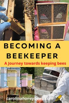Are you interested in helping bees by becoming a beekeeper? Here are some tips to consider before your new hive arrives.