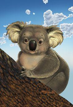 Koala TrueBlue Szekeres by Jozef-Szekeres Cute Animal Drawings, Animal Sketches, Cute Drawings, Baby Koala, Koala Bears, Koala Illustration, Koala Craft, Koala Tattoo, Koala Nursery