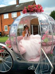horse and carriage - Cinderella glass carriage
