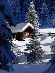 Snowy Cabin in the Woods - Reminds me of my great aunt/uncle's cabin in the woods….