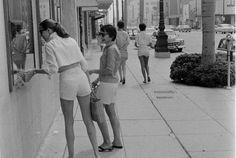 Miss Moss : Female Short Pants