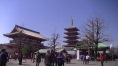 #japan#japon#travel#shrine