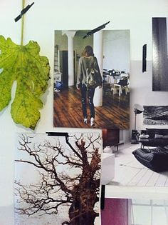 nice....a leaf incorporated into a mood board