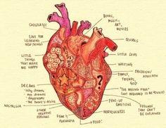scientific diagram of the heart