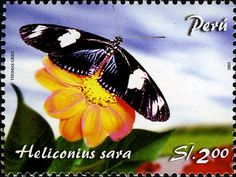 Peru Butterfly postage stamp