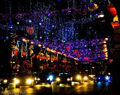 December in Singapore - #ridecolorfully through twinkling Christmas lights on Orchard Road