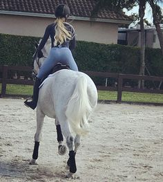 "1,051 curtidas, 19 comentários - Eliza Eddy (@lizawatts) no Instagram: ""Two tails @nobleoutfitters @equilineamerica @parlanti.international @samshield_official"""