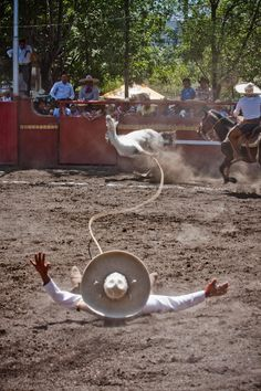 8 by Adrian Dovali on Mexican Rodeo, Mexican Outfit, Mexican Art, Bulls Wallpaper, Big Horses, Real Cowboys, What To Draw, Mexican American, Animals And Pets
