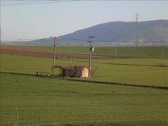 Αγροτικές Ειδήσεις: Καταρτίστηκε το πρόγραμμα αγροτικού εξηλεκτρισμού