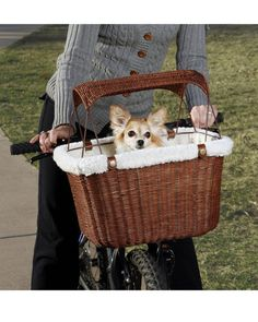 Pet Accessories -- Wicker Tagalong DOG Bicycle Tote Basket Bike Rattan PET Carrier W Safety Cage | eBay