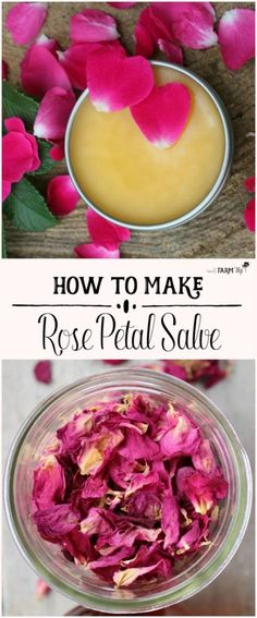 This rose petal salve recipe is made with real rose petals plus rosehip seed oil for amazing benefits when applied to mature, sun-damaged dry skin. Real Rose Petals, Dried Rose Petals, Homemade Beauty, Diy Beauty, Homemade Things, Beauty Hacks, Rose Petal Uses, Uses For Rose Petals, Mac Cosmetics