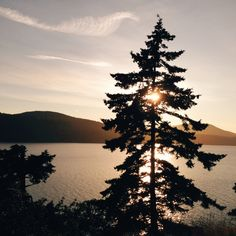 Sunset at Rosario on Orcas Island, WA. August 18, 2014 | Bradley Hanson | VSCO Grid