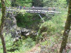 Schluchten von Crosery: Die Schluchten von Crosery: die Brücke über der Moselotte - France-Voyage.com