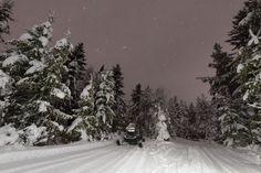 kemi finland night stars trees