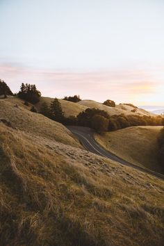 Just north of San Francisco's Golden Gate Bridge, Mount Tamalpais State Park rises majestically from the heart of Marin County.
