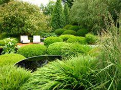 Diarmid Gavin garden