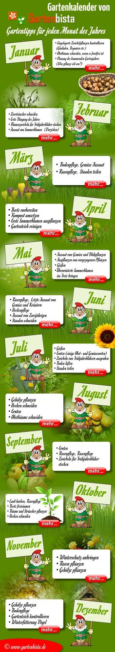 Gartenkalender                                                                                                                                                                                 Mehr