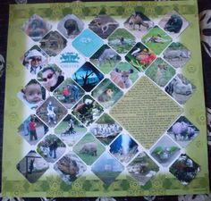 zoo scrapbook page -unique!  love the diagonal - think about making people pictures as big as 4 of these small ones