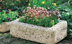 Pflanzgefäße aus Beton selber machen - Aus Hypertufa – einem torfhaltigen Beton – lassen sich schon für wenig Geld dekorative Pflanztröge und -kübel herstellen, die den wesentlich teureren Originalen aus Sandstein zum Verwechseln ähnlich sehen. Mit dieser Bauanleitung können Sie das ganz leicht selber machen. Mehr