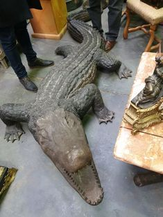 Impressive crocodile statue from Discover more beautiful items from Christophe Prouveur's collection, a professional Belgian antique dealer, on Transferantique. Crocodile, Statue, Antiques, Beautiful, Collection, Things To Sell, Antiquities, Crocodiles, Antique