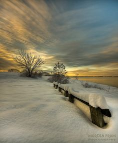 Lovely...  Snow Covered Bench at the Oslo Fjord  Morten Prom Photography