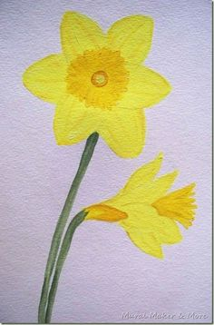 simple tutorial for painting daffodils