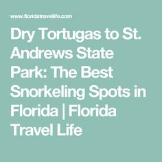Dry Tortugas to St. Andrews State Park: The Best Snorkeling Spots in Florida | Florida Travel Life
