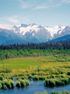 Alaska Weddings ~  A cruise through Alaska is a window into some of the country's most majestic scenery. Watch otters and whales splash and see a glacier shed snow into the water.  What to Do: A river kayak expedition is a great way to explore the area.